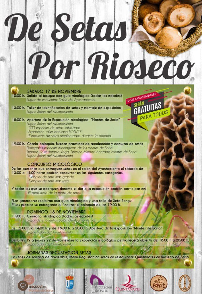 De setas por Rioseco