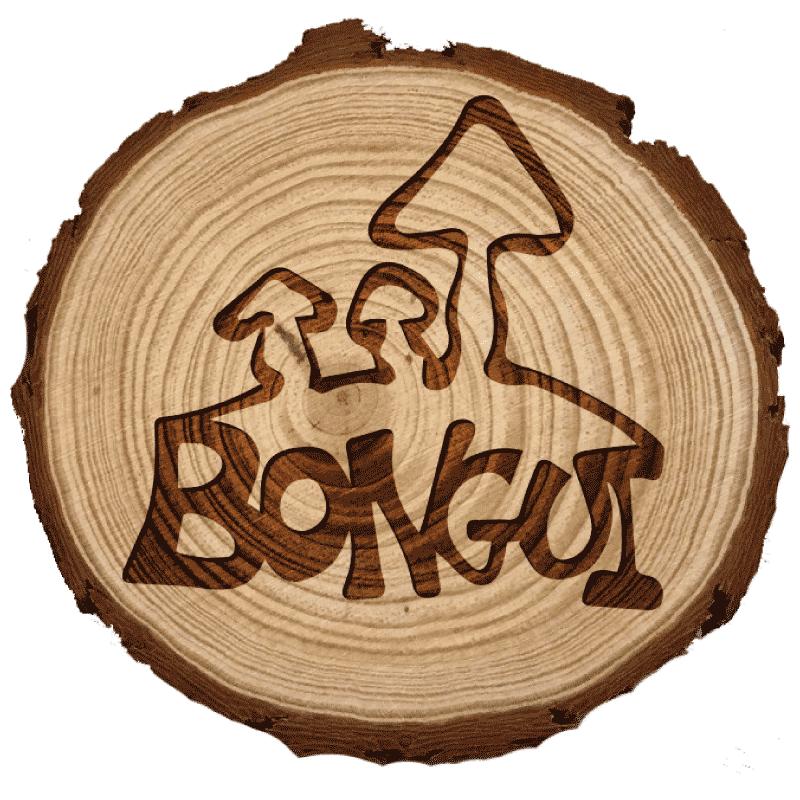 De setas por Rioseco Logo Bongui